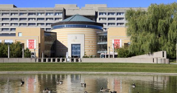 多伦多York 约克大学